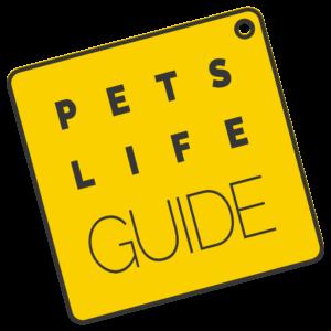 Autoschondecke Hund Test